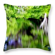 Plymouth Reflections #2 Throw Pillow