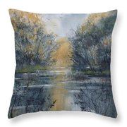 Pm River 2 Throw Pillow