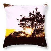 Pnw Sunset Throw Pillow