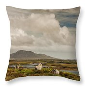 Pobull Fhinn Stone Circle Throw Pillow