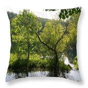Pocket Lake Throw Pillow