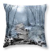 Pocono Mountain Winter Throw Pillow