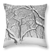 Poets Walk #1 Throw Pillow
