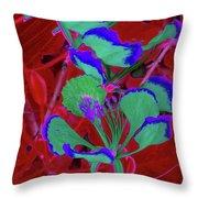 Poinciana Flower 8 Throw Pillow
