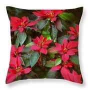 Poinsettia Christmas Throw Pillow