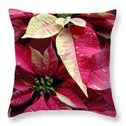 Poinsettias -  Painted And Speckled Throw Pillow