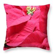 Poinsettias #1 Throw Pillow