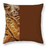Point Lobos Abstract 106 Throw Pillow