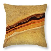 Point Lobos Abstract 111 Throw Pillow