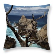 Point Lobos Rocks And Branches Throw Pillow