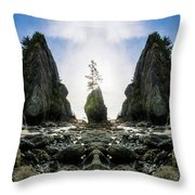 Point Of The Arches Reflection Throw Pillow
