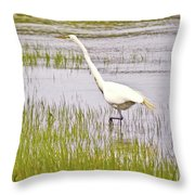 Point Pinole Regional Shoreline 4 Cropped Throw Pillow