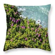 Point Reyes National Seashore Coast On Pacific Ocean Throw Pillow