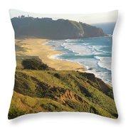Point Sur National Park Throw Pillow