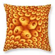 Point Throw Pillow