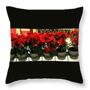Pointsetta Throw Pillow