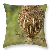 Poised For Winter Throw Pillow