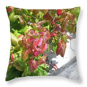 Poison Ivy Comes A Creeping Throw Pillow