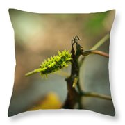 Poisonous Insect Larva Throw Pillow