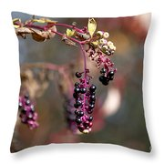 Pokeweed Berries 20121020_129 Throw Pillow