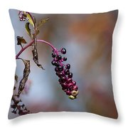 Pokeweed Berries 20121020_134 Throw Pillow