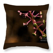 Pokeweed Emerges - Wc Throw Pillow