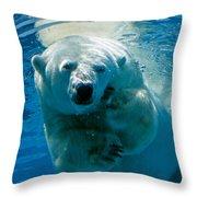 Polar Bear Contemplating Dinner Throw Pillow
