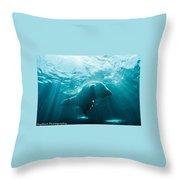 Polar Bear Swim Throw Pillow
