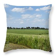 Polder Near Reeuwijk-1 Throw Pillow