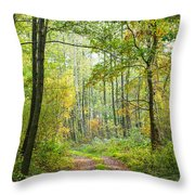 Polish Forest 2 Throw Pillow