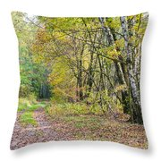 Polish Forest 1 Throw Pillow