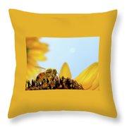 Pollen-coated Honey Bee On A Sunflower Throw Pillow