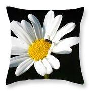 Pollen Collection Throw Pillow