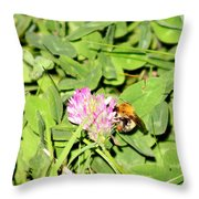 Pollen Collection Throw Pillow