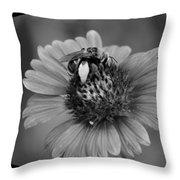 Pollen Collector Bw Throw Pillow