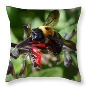 Pollen Covered Bee Throw Pillow