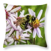 Pollen Gathering Throw Pillow