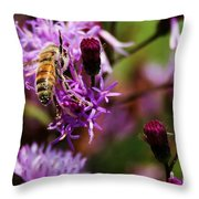 Pollen Powdered Bee Throw Pillow