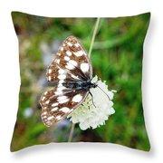 Melanargia Galathea Throw Pillow