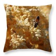 Pollinating Bee Throw Pillow