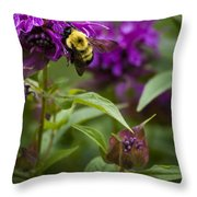 Pollinating Bumble Bee Throw Pillow
