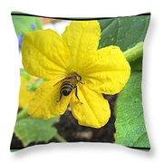 Pollinating Cucumber 1 Throw Pillow