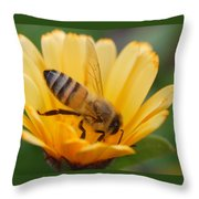 Pollination 2 Throw Pillow