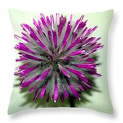 Polly Throw Pillow