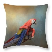 Polly Want A Cracker Throw Pillow