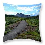 Polychrome Pass Trail, Denali Throw Pillow
