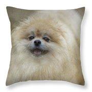 Pom Pom Smiling Throw Pillow