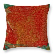 Pomegranate Blossom Abstract Throw Pillow