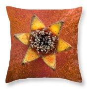 Pomegranate Blossom End Throw Pillow