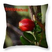 Pomegranite Art II Throw Pillow